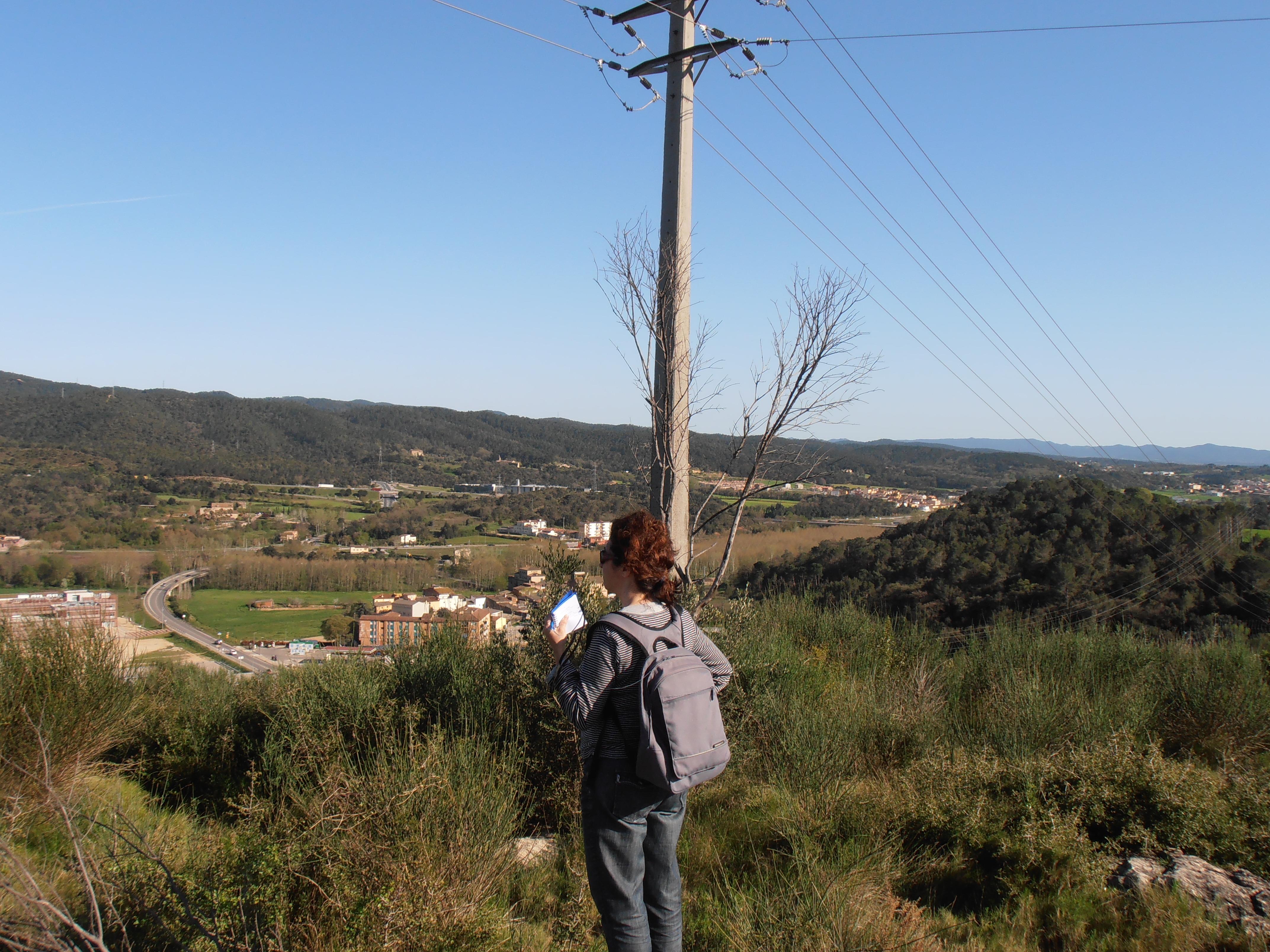 Puig de Montilivi – Història geològica